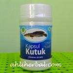 Ekstrak Ikan Gabus (Ikan Kutuk)