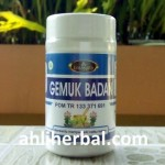 Obat Penambah Nafsu Makan Herbal (Gemuk Badan)